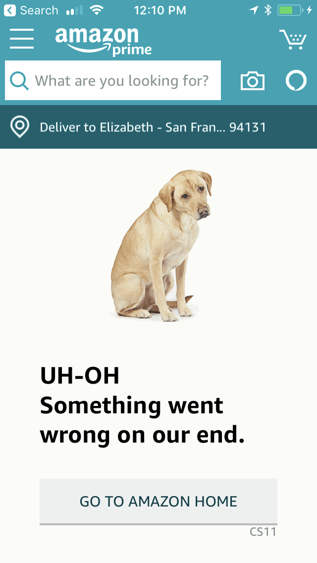 On Amazon Prime Day, site and app crash; shoppers left in lurch instead see photos of dogs