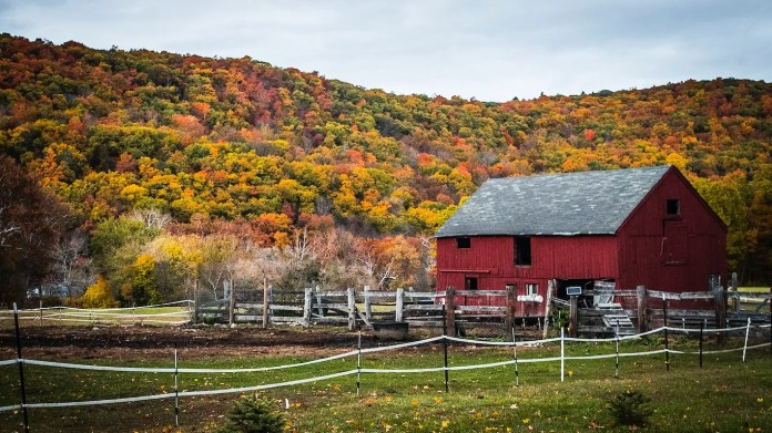 Kent, Connecticut • Kent, Connecticut, is known for having some of the best foliage in New England, so visiting during autumn is bound to be gorgeous. Downtown Kent features a walkable selection of cafes, antique shops and boutiques, and Kent Falls State Park boasts waterfalls. Bargain hunters should check out the Elephant's Trunk Country Flea Market —which says it's the largest weekly flea market in New England — to poke around at more than 500 vendor booths.