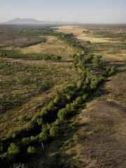 The San Pedro snakes its way through the desert east of Sierra Vista.
