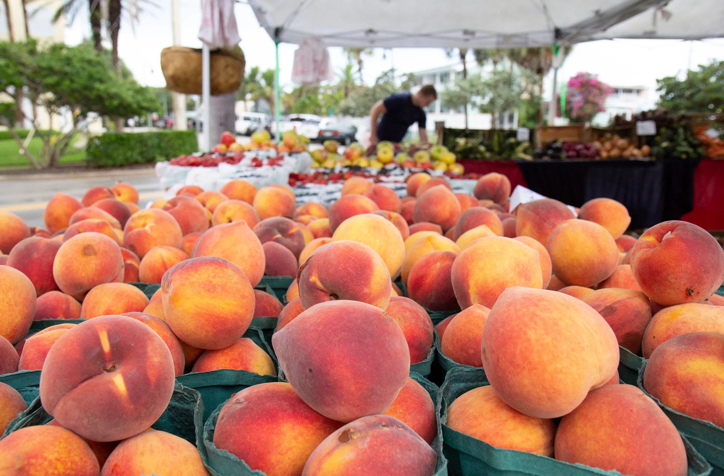 Farmers Market Vero Beach