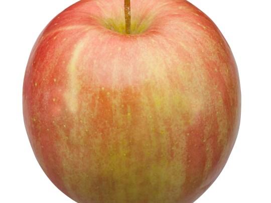 Low-acid Fuji apples arrive late in the season.