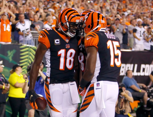Cincinnati Bengals topple Baltimore Ravens and put league on notice with 2-0 start