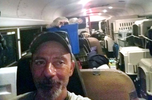East Tennessee resident Tony Alsup in his school bus with shelter pets from South Carolina  Alsup transported 64 dogs and cats to Alabama and plans to go back.