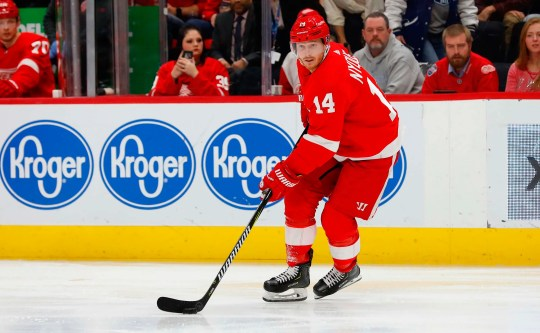 Detroit Red Wings right wing Gustav Nyquist (14) skates with the puck in the second period against the Montreal Canadiens at Little Caesars Arena on Tuesday, Jan. 8, 2019.