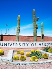 Two University of Arizona students were arrested after an assault on a black student that led hundreds of people in Tucson to protest Friday afternoon.