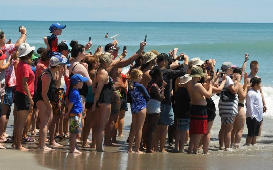 Crowds gather in 2019 to watch the East Coast Dog Surfing Championships. The 57th annual Easter Surf Festival featuring the 8th annual East Coast Dog Surfing Championships presented by Beachside Media will return after taking 2020 off because of the COVID-19 pandemic.
