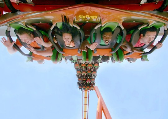 Tatsu is one of the many coasters at Six Flags Magic Mountain.