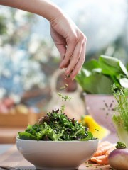 A tossed salad is a healthy start to a nutritious meal or a meal itself. Labeling foods as forbidden or not allowing yourself to eat certain foods can result in deprivation and disordered eating.