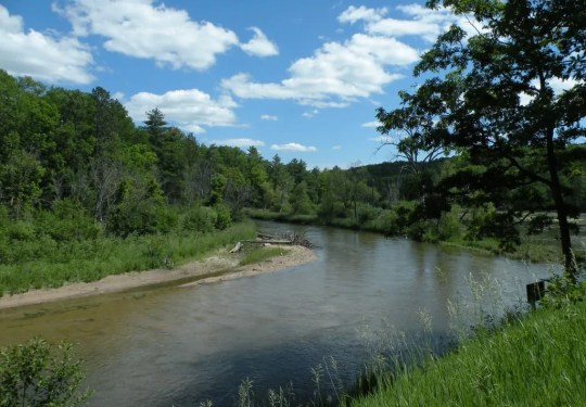 Wild Pain and Scenic River
