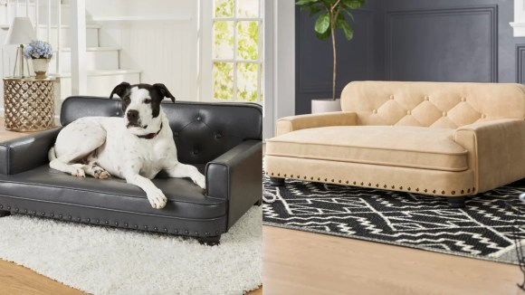 Your dog deserves to sleep in style too.