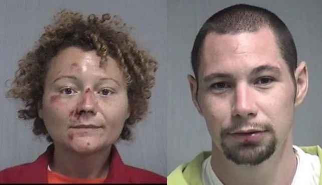 A Florida couple had sex in the back of a police car after getting arrested for a DUI
