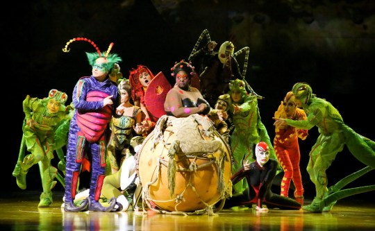 "The cast of Cirque du Soleil ""Ovo.'"