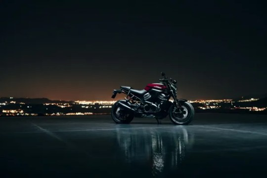 The Harley-Davidson Bronx is a middleweight model with the new Revolution Max engine. It will be released in 2020.