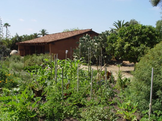 Raised beds have never been a part of California gardening due to good soils and weather.