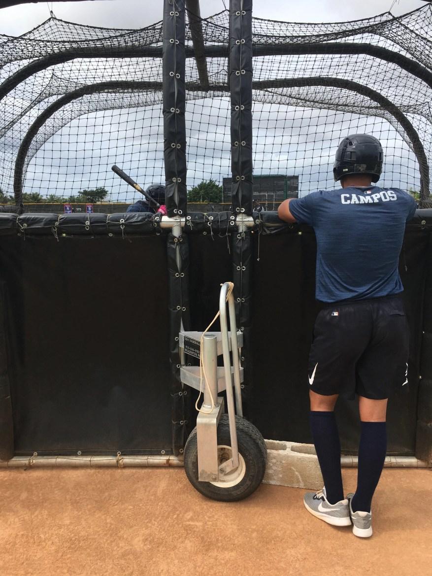 Перспективы тигров Роберто Кампос наблюдает за товарищем по команде во время тренировки.