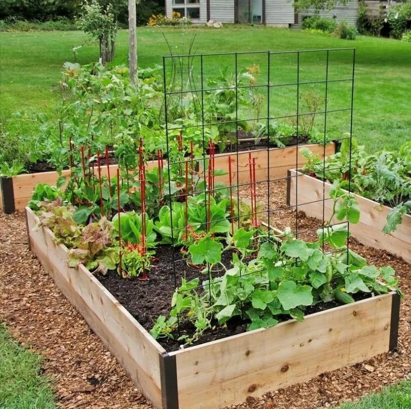 Gardening on the rise in NJ during coronavirus crisis on Gardening  id=20287