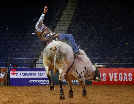 Alex Cerqueira rides The Hard Stuff during the second day of competition for the PBR Unleash The Beast Gwinnett Invitational at the Infinite Energy Center on March 15, 2020 in Duluth, Georgia.