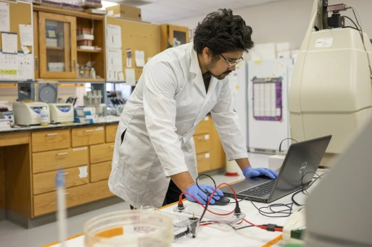 Jacob Toth works in the lab at Surge Laboratory at the Geneva Campus