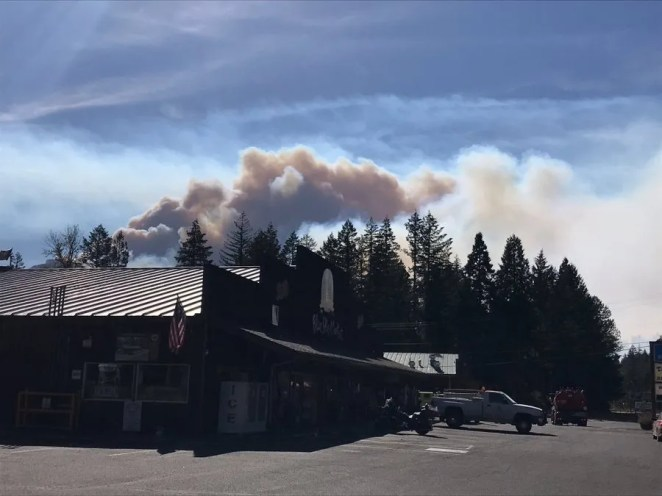 As of noon Sept 8, the Holiday Farm Fire located along Oregon Highway 126 had traveled from milepost 47, where it was first reported last night, to Vida Fire Station, an estimated distance of 20 miles.