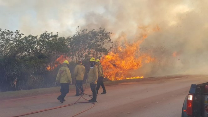 The proposed bill will add an additional prohibited action under Guam's arson statute.