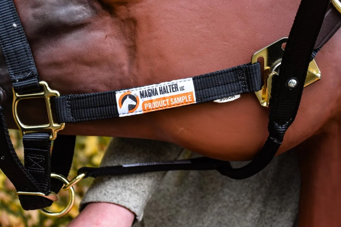 Yarger replaced the clips and buckles found on traditional halters with a magnetic plate and magnet to make it easier for para-equestrians to halter a horse.