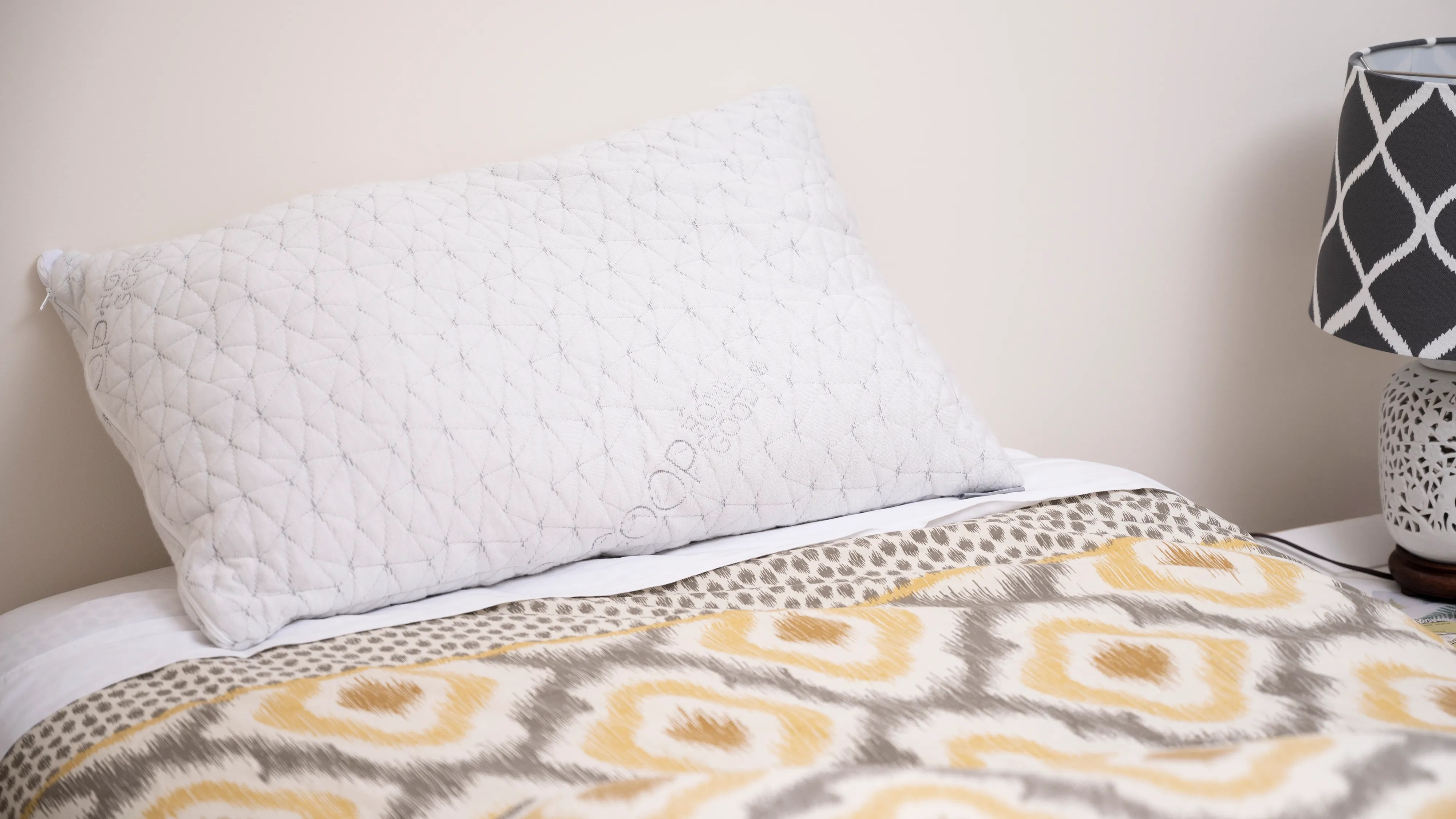 coop home goods amazing pillows are 20