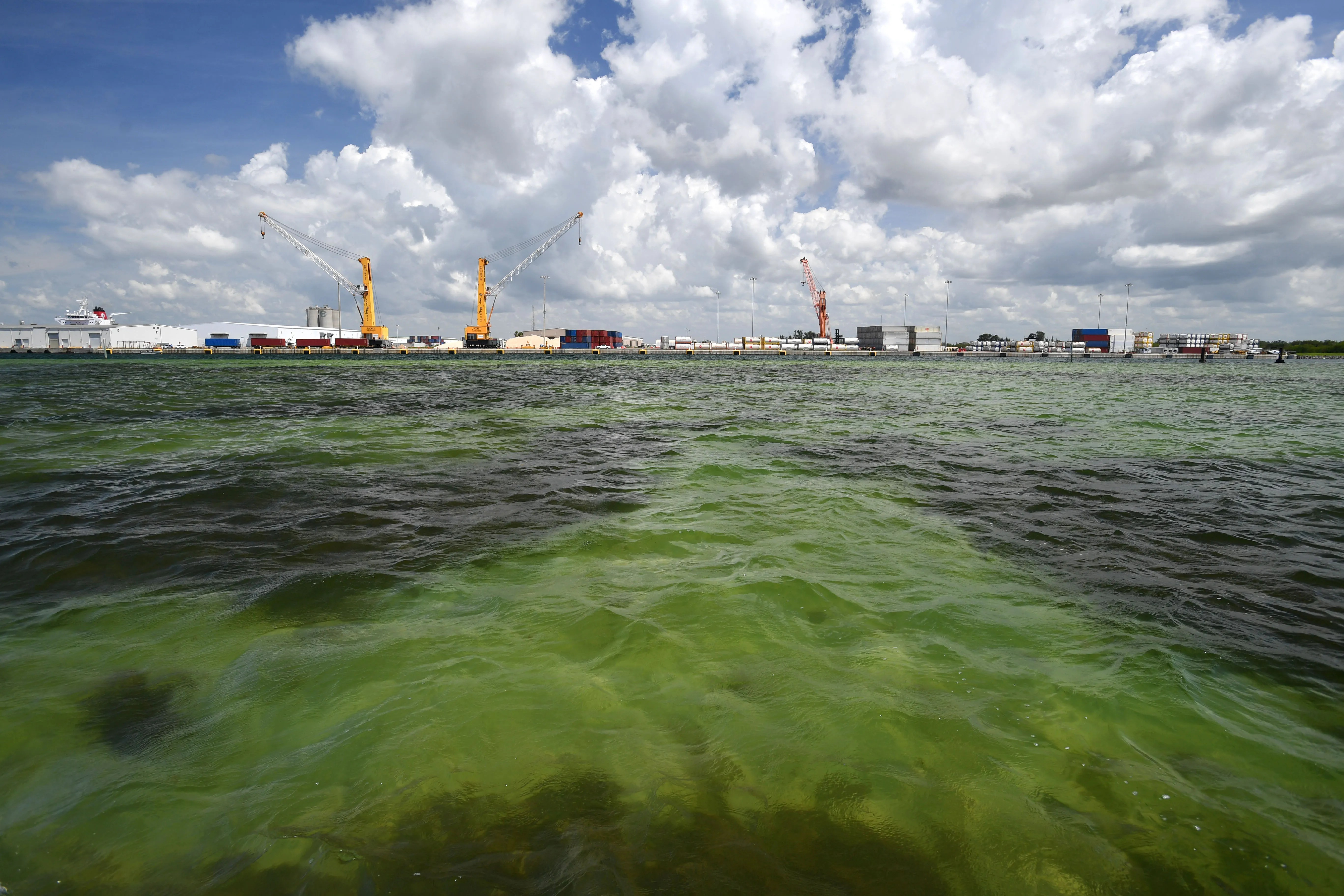 The water of Tampa Bay near Port Manatee in Florida. Millions of gallons of industrial wastewater are being pumped into Tampa Bay as the result of a leak at the Piney Point fertilizer plant processing plant.