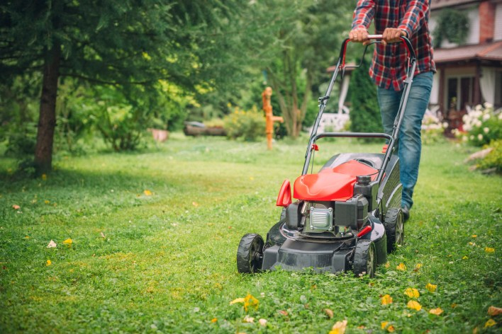 Lawns are starting to grow again, so it's time to find the best picks to clip grass