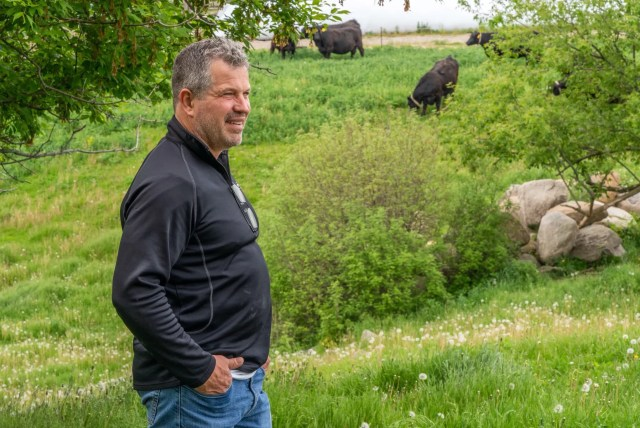 Doug Ney, beef farmer and owner of Ney's Premium Meats, looks over his angus cows on pasture in Hartford.