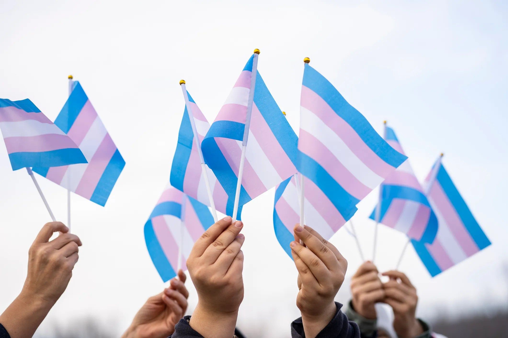 Transgender students are protected at school against discrimination, President Joe Biden's administration said Wednesday. Here, people hold the transgender flag.
