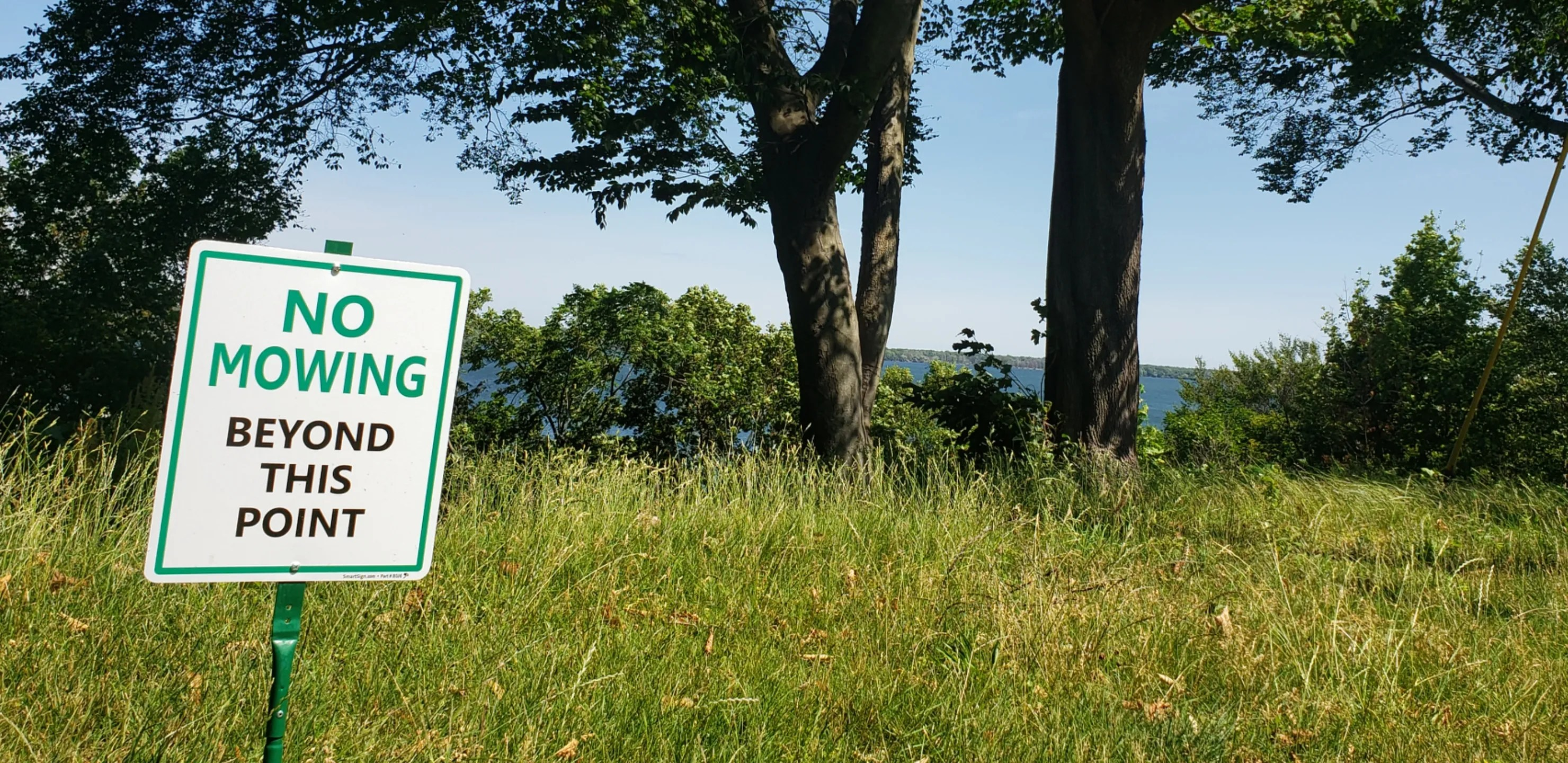 Foresters offers a trusted final expense insurance solution and much more besides. Bluffs Protection Plan No Mowing Signs Come To Erie S West Bayfront