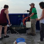 Annual Gulf of Mexico dead zone larger than average, researchers say 💥😭😭💥