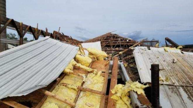 When the storm hit, the Schanbacher's freestall barn lost its roof. Only the north wall of the building was left standing.