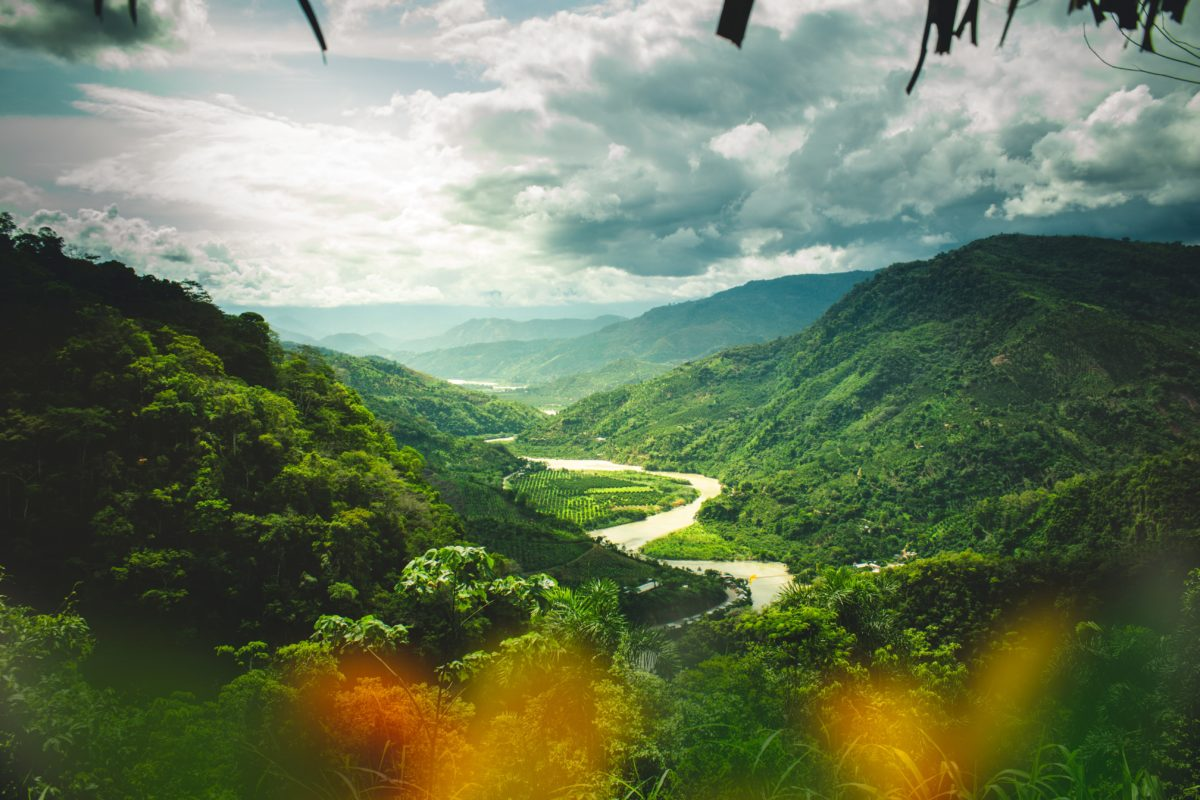 Ayahuasca-Retreat im Dschungel
