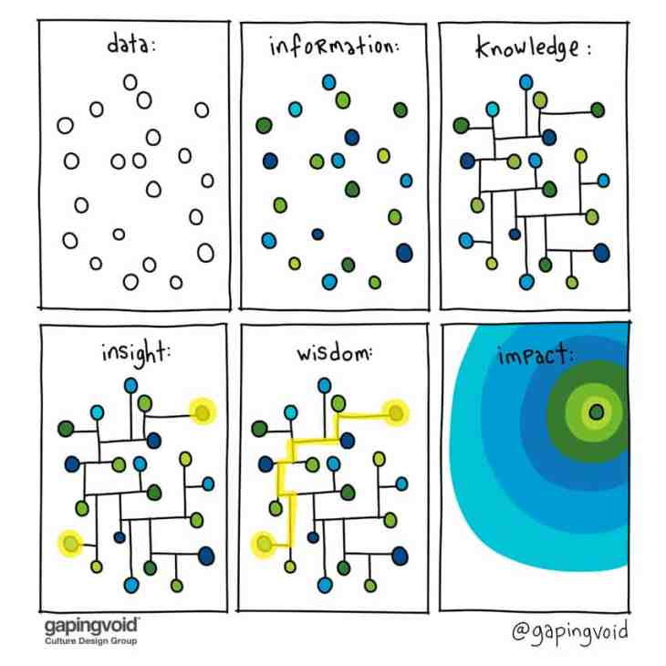 data information knowledge insight wisdom impact