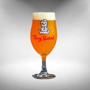 Tiny Rebel Stemmed Beer Glass