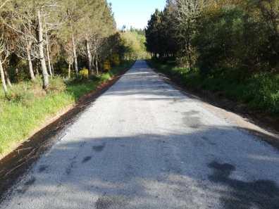 Anxeriz asfaltado de carretera Friol (Lugo)