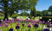 Il Parco Giardino Sigurtà apre i battenti
