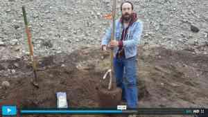 Thumbnail of video clip - Ian planting a tree