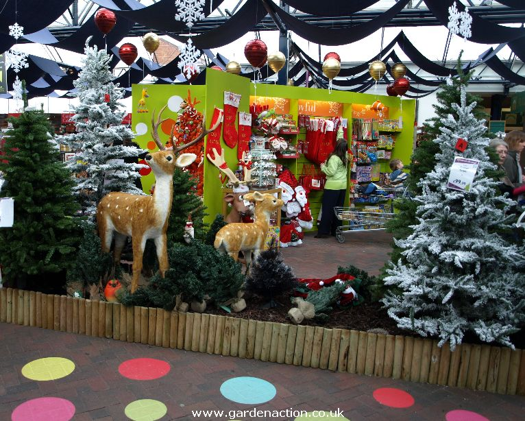 christmas decorations at the range | Psoriasisguru.com