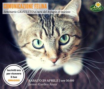 Comunicazione felina seminario gratuito
