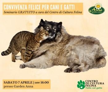 Convivenza felice per cani e gatti