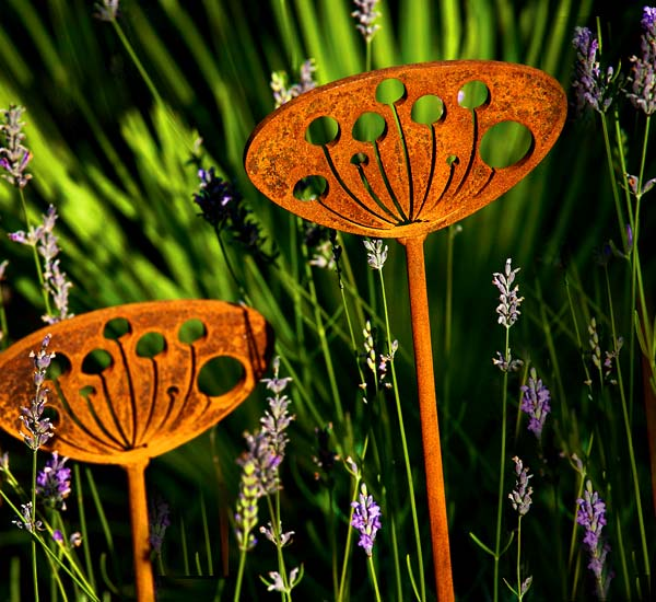 Best Garden Design Instagram