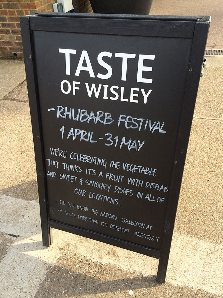 Garden Centre Blog Rhubarb Festival