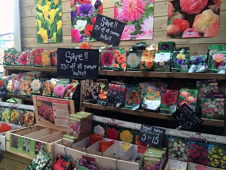 Garden Centre Blog - Timmermans Garden Centre3