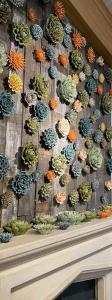 Loving the ceramic succulent wall