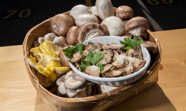 Preserving Health Benefits of Mushrooms in the Kitchen