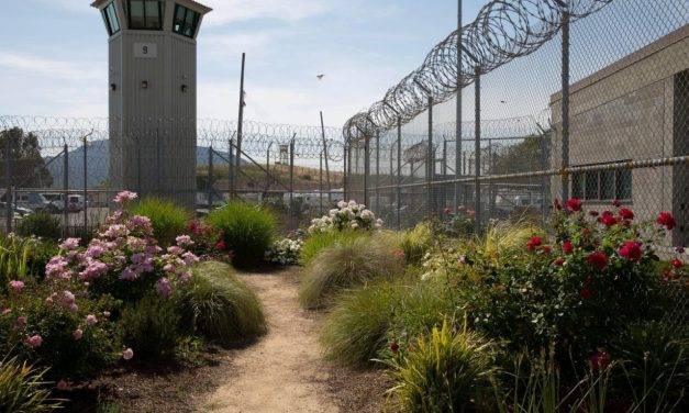 Prison Gardens: Inside-Out Crime Prevention
