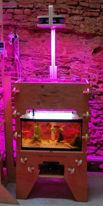 Print this aquaponics system