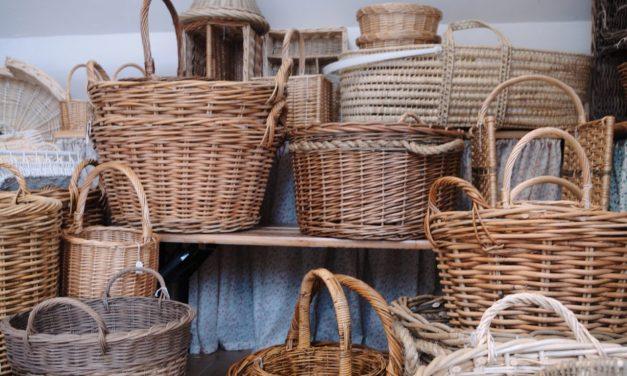 Backyard to Basket in 6 Simple Steps